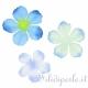 40 fiori in tessuto azzurri begonia